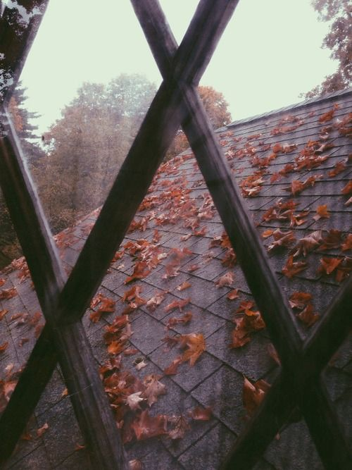 #Tumblr #autumn #fall #october