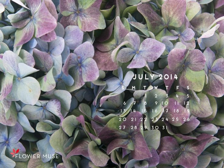 July 2014 Calendar for your desktop wallpaper. Download for free on Flower Muse Blog