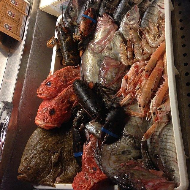 Scegli il pesce che preferisci e noi ti prepareremo un piatto speciale!