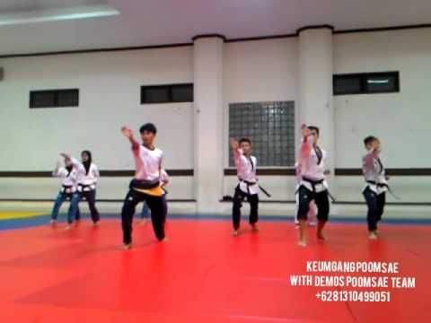 Taekwondo Poomsae step by step and slow motion