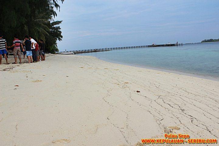 Pantai Pulau Sepa Jakarta