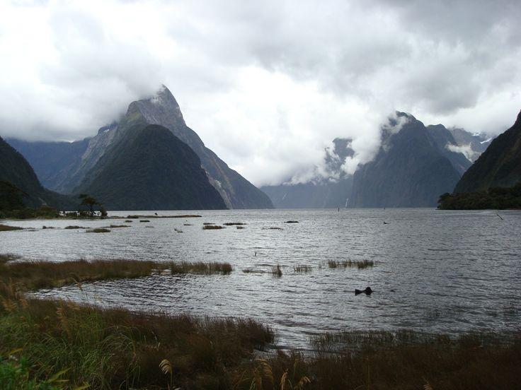 Milford Sound, New Zealand By www.silberhorn.co.nz