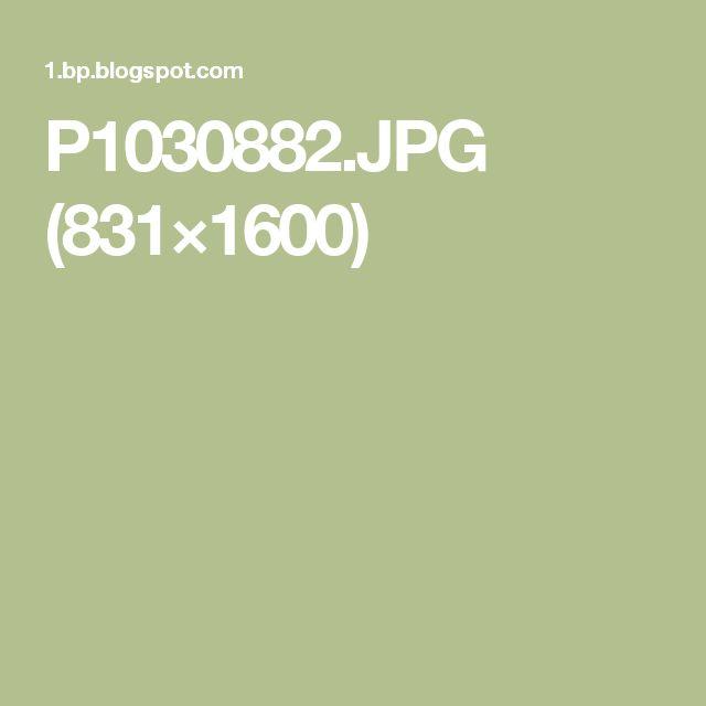 P1030882.JPG (831×1600)