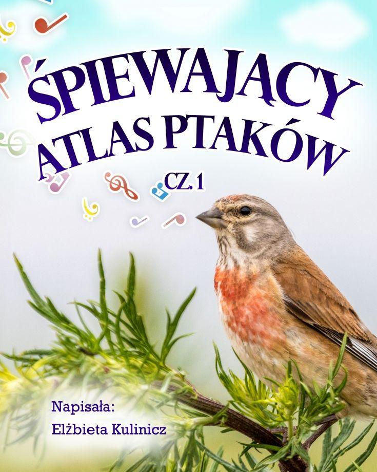 Śpiewający atlas ptaków, cz. 1 - ilustrowany audiobook dla dzieci