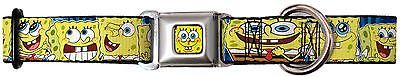 Funny Sponge Bob Faces