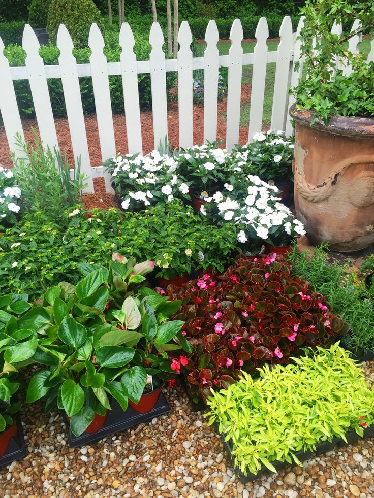 13757 Best Images About Diy Gardening Ideas On Pinterest