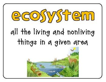 ecosystem organization levels of the environment biotic vs abiotic ecology environment. Black Bedroom Furniture Sets. Home Design Ideas