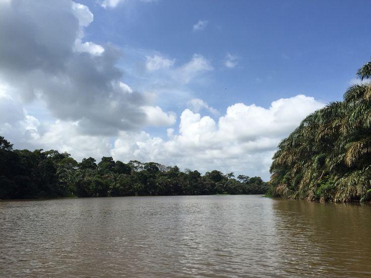 #costarica #tortuguero  Parque Nacional Tortuguero  Costa Rica