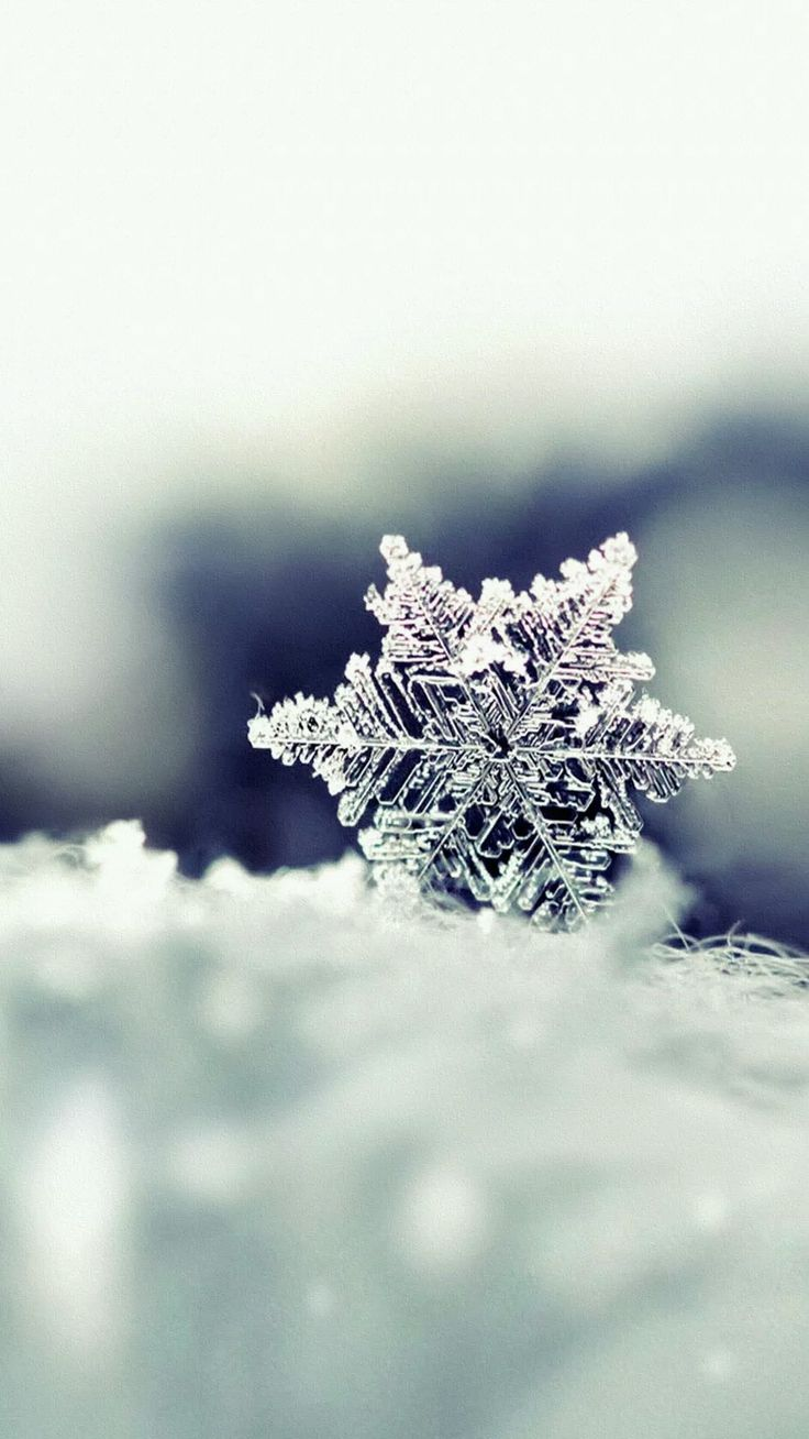 Iphone Wallpapers – Icey Snowflake – Tap to see more #Beautiful Snow & #Snowflakes #Winter iPhone #W…