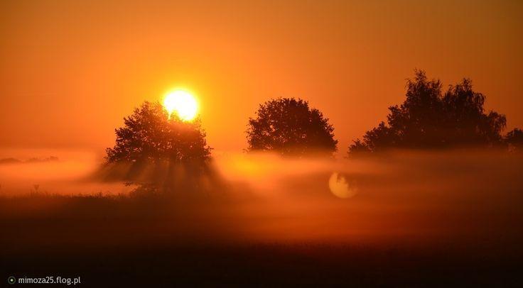 piękna mgła w Polsce