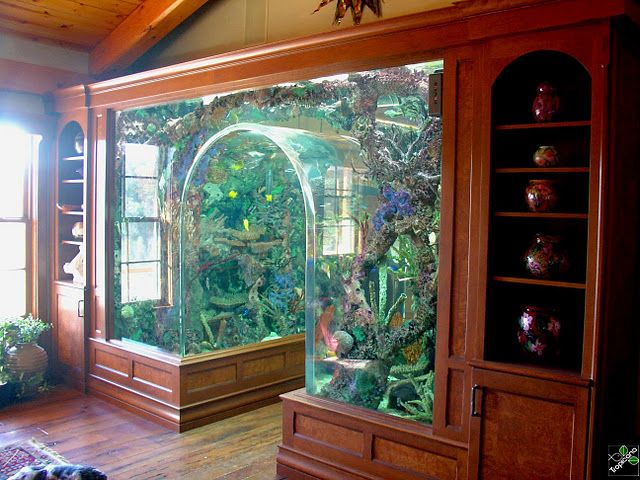 WOW!!! Custom 5000 gallon archway aquarium installed by Tropicana Living Things in a northern Illinois residence. The tank serves as an entryway between the kitchen and great room, and houses a huge variety of saltwater fish. Features a custom built artificial reef insert, and all equipment is housed in a dedicated room on the lower level.