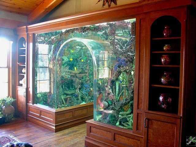 Wow custom 5000 gallon archway aquarium installed by for Custom made fish tanks