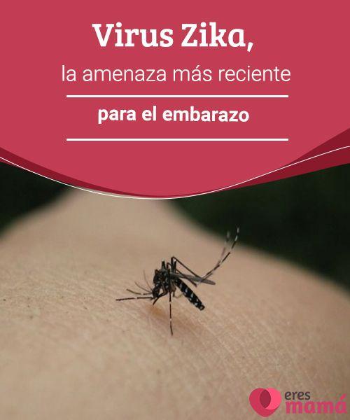 Virus Zika, la amenaza más reciente para el embarazo  Se tiene entendido que el virus Zika es una infección semejante al dengue y al chikungunya, igualmente es provocado por la picadura de mosquito