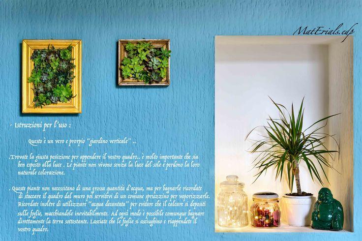 succulent plants, piante grasse, giardino verticale. Hand Made