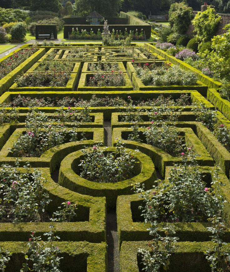 Formal edging with wild centres.