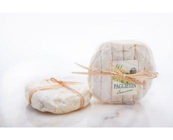 Wrinkled Paglierina | Sensibus
