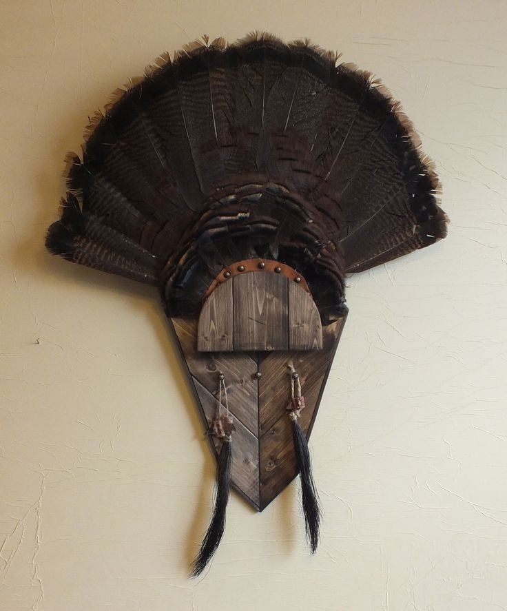 Turkey fan mount template 28 images the garhole diy for Turkey fan mount template