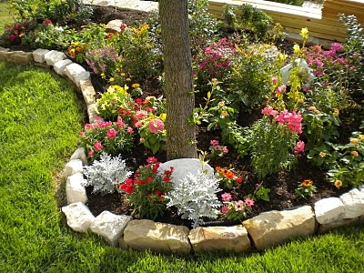 Flower Garden Ideas Around Tree 13 best landscaping around trees images on pinterest | garden