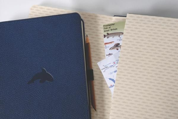 Dingbats* is an eco-friendly brand of notebooks designed and developed in a masterful consideration of materials and design.