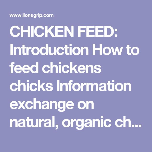 CHICKEN FEED: Introduction How to feed chickens chicks Information exchange on natural, organic chicken feed and poultry nutrition, free range chickens, pastured poultry, grass-fed grass fed poultry, excellent quality of traditional and modern alternative poultry methods organic chicken feed, biological, natural, blend feed, additive free, unmedicated world of chickens, small farm, farming, rangefed, range fed, pasture, pastured poultry, starter feed, mash, natural, homestead, home stead…