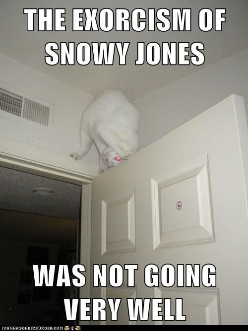 Snowy Jones, huh? Oh man, that's funny! LOL