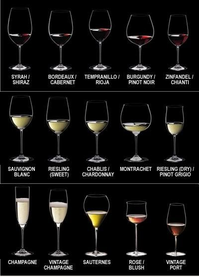 Wine snob's guide to the appropriate style wine glass