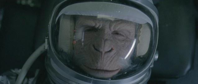 space-monkey-3.jpg (637×270)