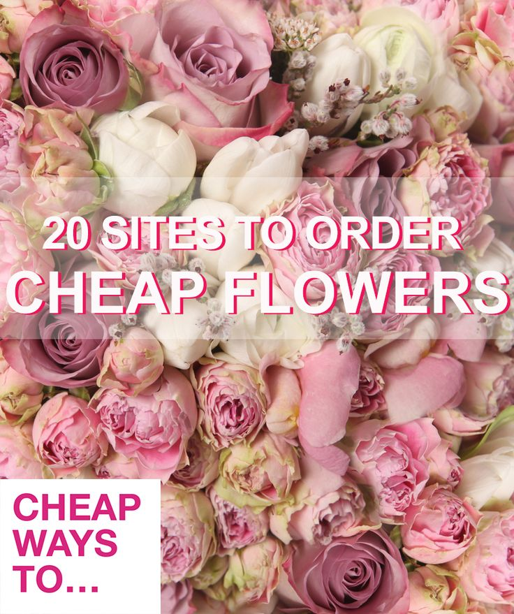 Best 25+ Flowers online ideas on Pinterest | Wholesale flowers ...