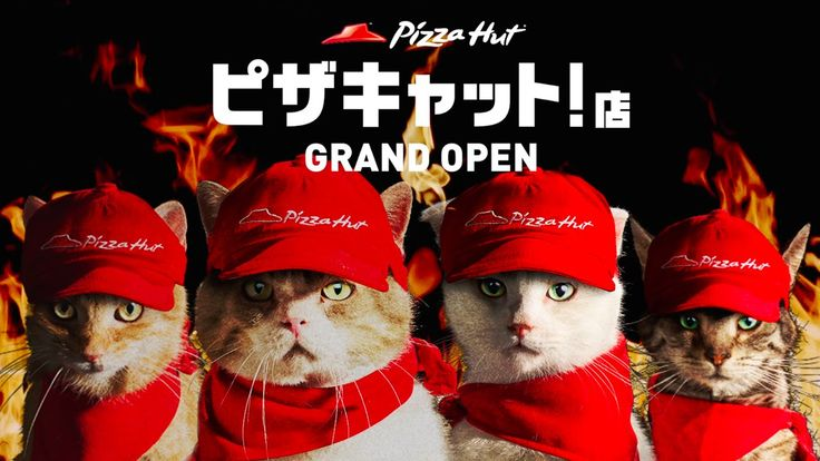'Pizza Cat', A Japanese Pizza Hut Parody Series (or Brilliant Ad Campaign) That Features Cats As Employees