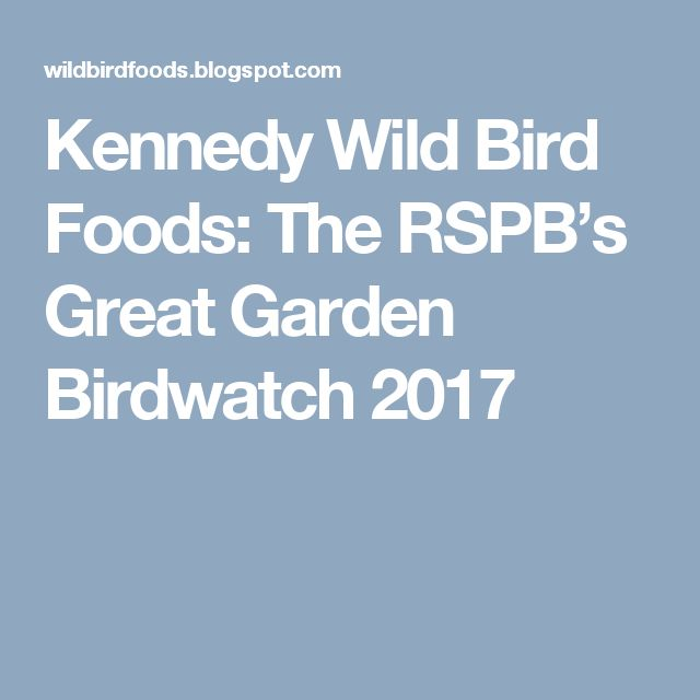 Kennedy Wild Bird Foods: The RSPB's Great Garden Birdwatch 2017