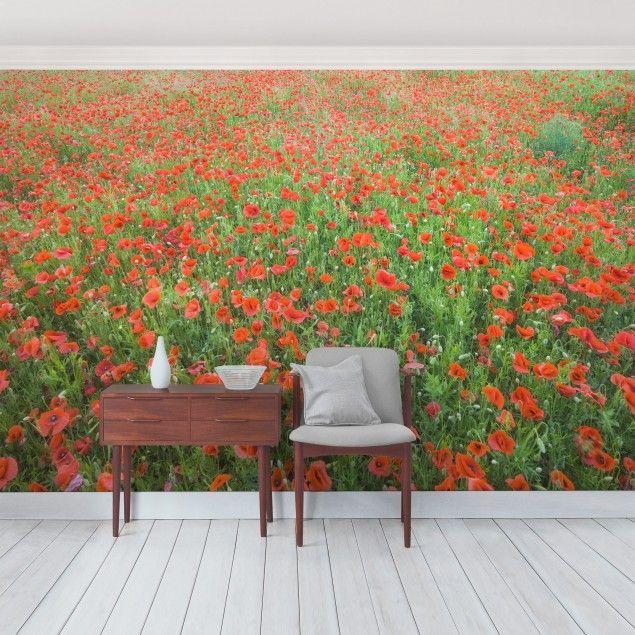 Selbstklebende Tapete Vlies : Selbstklebende Tapete – Fototapete Mohnblumenfeld