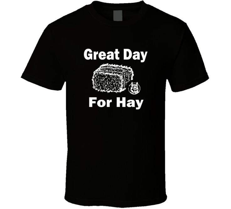 Letterkenny Problems #dontgiveashirt #letsdothis #letterkennyproblems #10ply #greatdayforhay
