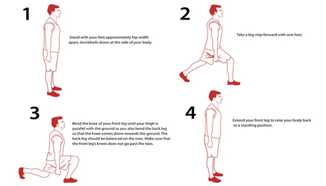 The lunge is a weight training exercise for your lower body. Targets: Legs