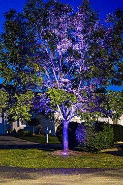 24 best led landscape lighting images on pinterest landscape led outdoor and landscape lighting tree uplighting color changing led super bright leds mozeypictures Gallery