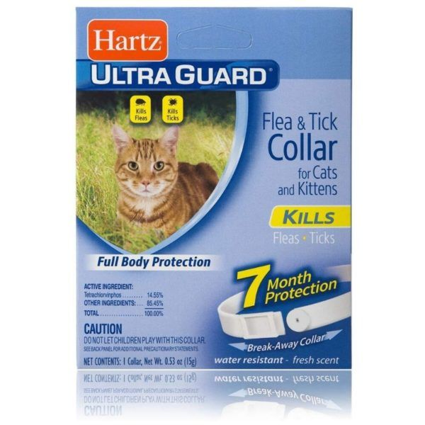 The Hartz Ultraguard Flea And Tick Collar Is The Best Cat Flea Collar For Budget Friendly Pet Owners Who Don T Wa In 2020 Flea And Tick Cats And Kittens Kitten Collars