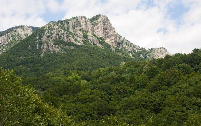Ο παράδεισος της Ελλάδας: Η πόλη με τα παρθένα δάση, τα πετρόχτιστα γεφύρια, τη σπάνια βλάστηση και τους πανέμορφους καταρράκτες