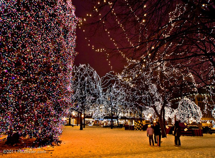 Christmas Lights Rice Park St. Paul Minnesota - Minneapolis Photography Photo Blog : st paul lighting - azcodes.com