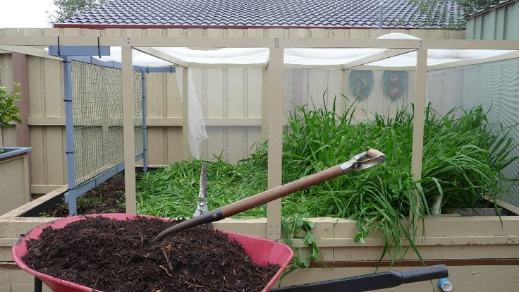 July 2015.....Its mid winter here in Melbourne, and its time to cut down the green manure in Ecobed 2 and cover it with compost ready for planting potatoes.  I will leave the compost under mulch for 6 weeks to mature.  http://jas49580.blogspot.com.au/2015/07/its-time-to-harvest-green-manure-as.html