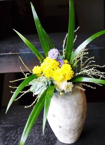 小菊2種・友禅菊・シャガ・ミモザアカシア
