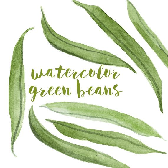 Aquarell grüne Bohnen Green Bean-ClipArt von DigitalPressCreation