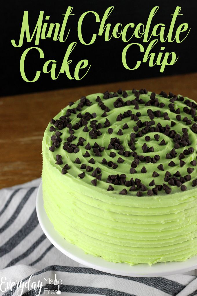 This is the only Mint Chocolate Chip Cake recipe you will ever need! Dark chocolate cake is the perfect vessel for this…