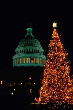 President Calvin Coolidge lit the first National Christmas Tree in 1923. The 48-foot balsam fir tree... - Provided by Town and Country