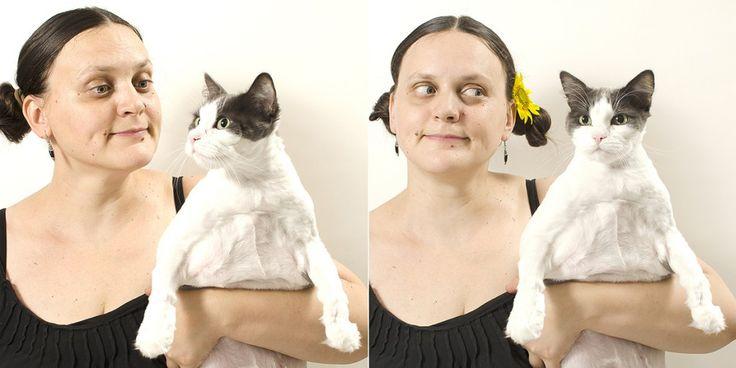 yau concept_elena & my super cats (2)