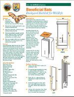 304 best Bats images on Pinterest Bat box Bird houses and Bat