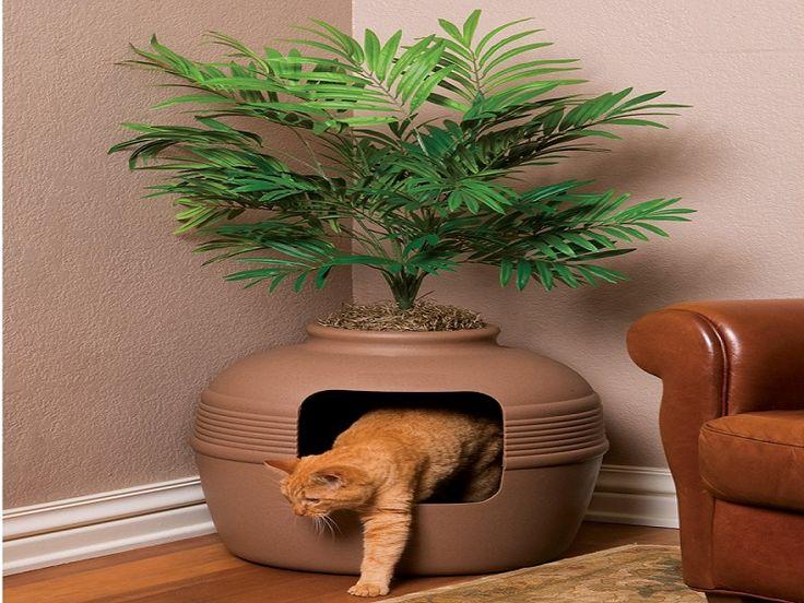 Natural Outdoor Cat Litter
