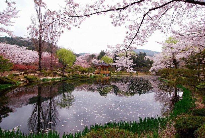 The Beauty of Bomun Pavilion Gyeongju