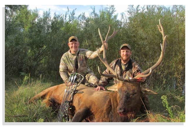 Fred Eichler: 5 Musts of a Guided Elk Hunt