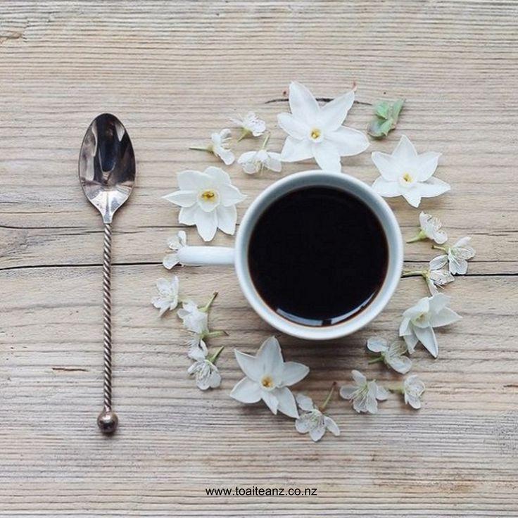 "Indulge in Toai Tea's ""Vanilla Treat"" - The artisan blend of black teas is combined with freshly cut Madagascar Vanilla Bean  ^SK www.toaiteanz.co.nz"