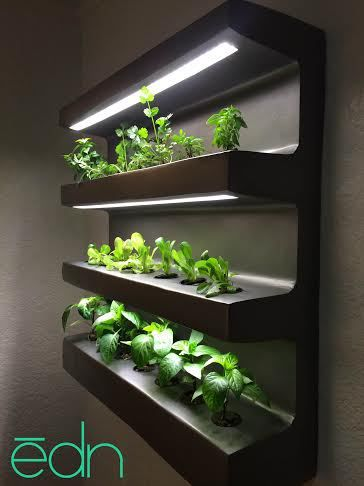edn is a smart shelving system that automatically grows herbs and vegetables. edntech.com