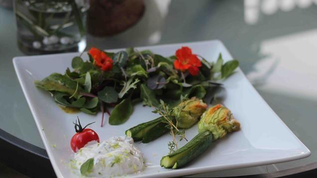 Rezept: Gefüllte Zucchiniblüten mit Minzcreme an Kapuzinerkresse